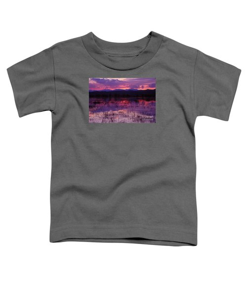 Bosque Sunset - Purple Toddler T-Shirt