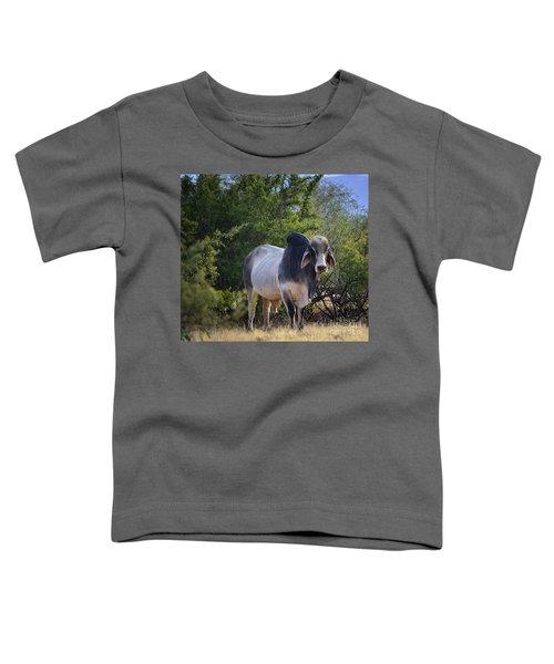 Brahma Cow Toddler T-Shirt