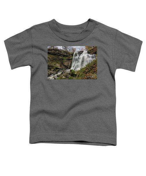 Brandywine Falls Toddler T-Shirt by James Dean