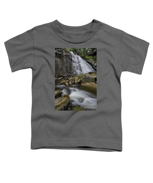 Brandywine Flow Toddler T-Shirt by James Dean