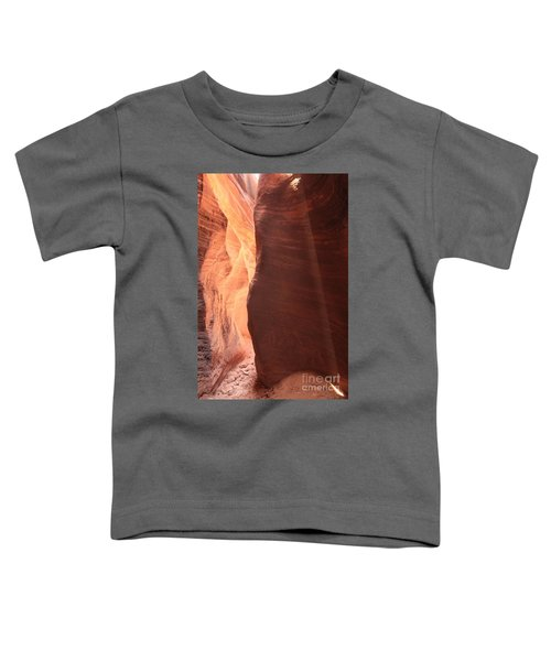 Buckskin Light Toddler T-Shirt