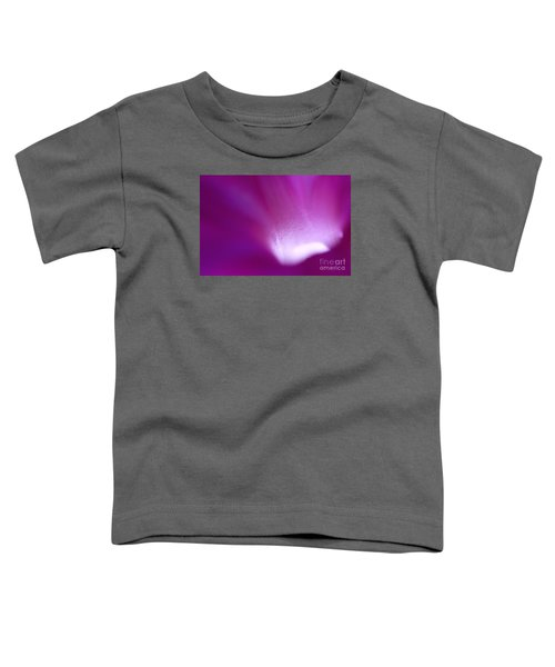 Buddhas Light  Toddler T-Shirt