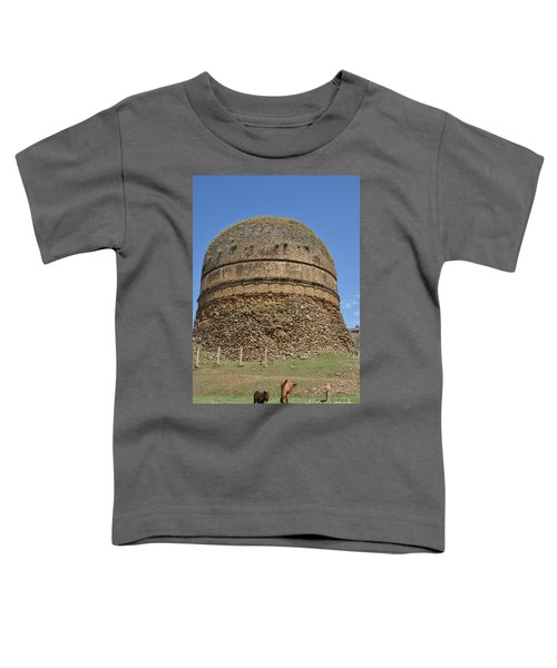 Buddhist Religious Stupa Horse And Mules Swat Valley Pakistan Toddler T-Shirt