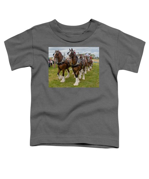 Budweiser Clydesdales Toddler T-Shirt