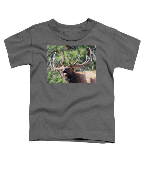 Bugling Bull Toddler T-Shirt