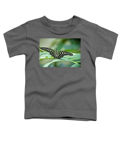 Butterfly Resting Color Toddler T-Shirt
