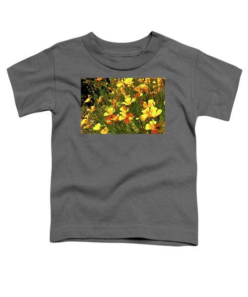 California Poppies Toddler T-Shirt