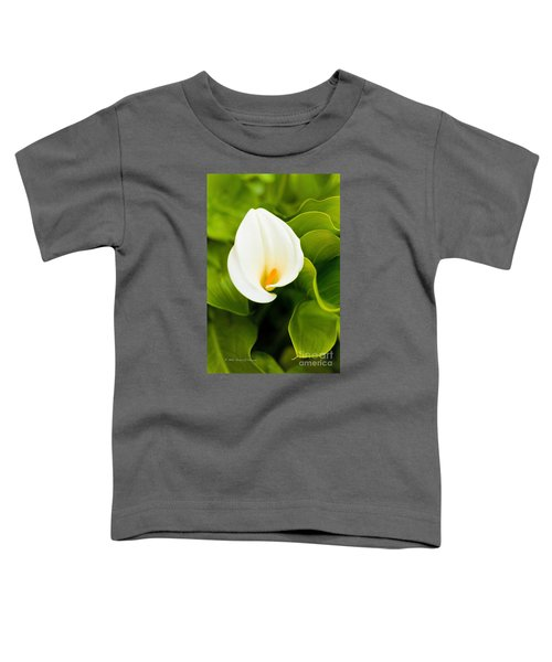 Calla Lily Plant Toddler T-Shirt