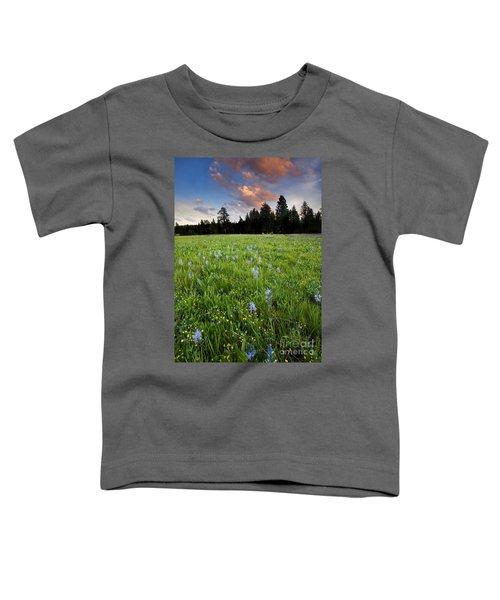 Camas Sunset Toddler T-Shirt