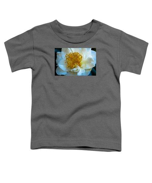 Camellia Toddler T-Shirt