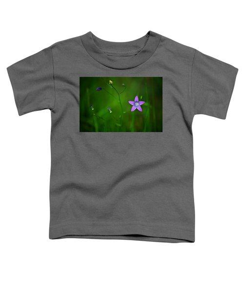 Campanula Patula Toddler T-Shirt
