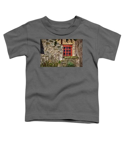 Carmel Mission 10 Toddler T-Shirt