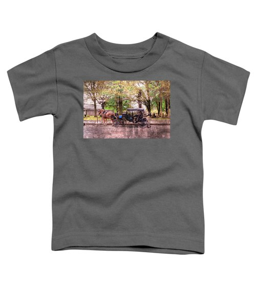 Carriage Rides Series 03 Toddler T-Shirt
