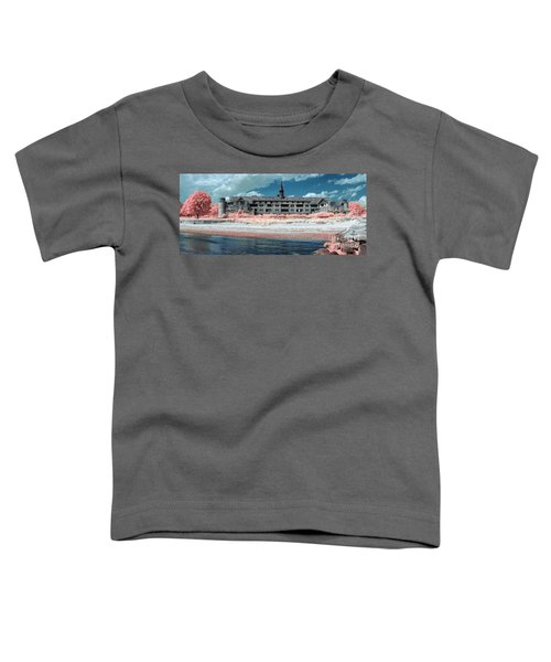 Castle In The Sky Toddler T-Shirt
