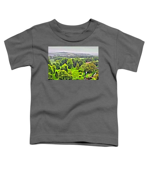 View From The Castle Toddler T-Shirt