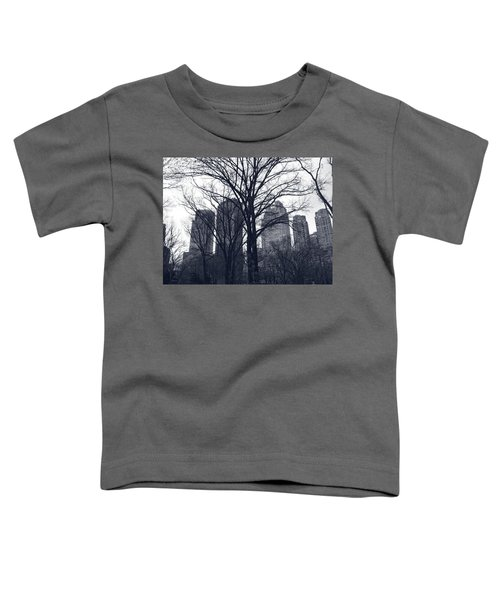 Central Park In New York Toddler T-Shirt