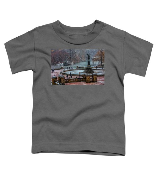 Central Park Snow Storm Toddler T-Shirt