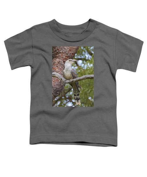 Channel-billed Cuckoo Fledgling Toddler T-Shirt