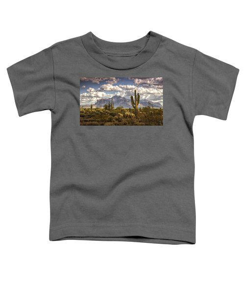 Chasing Clouds Two  Toddler T-Shirt