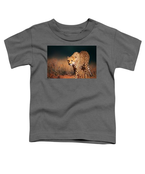 Cheetah Approaching From The Front Toddler T-Shirt