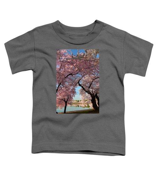 Cherry Blossoms 2013 - 024 Toddler T-Shirt