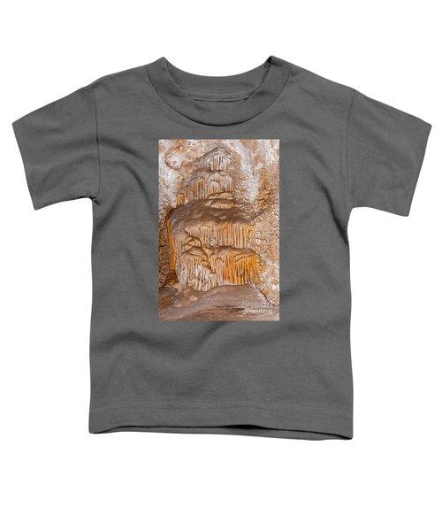 Chinesetheater Carlsbad Caverns National Park Toddler T-Shirt