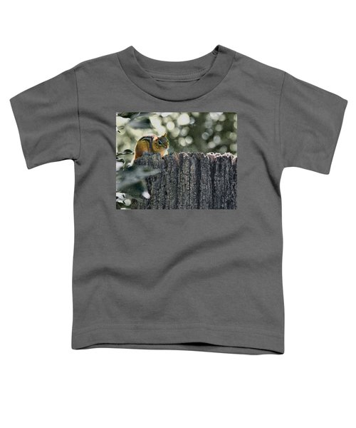 Chipmunk  Toddler T-Shirt