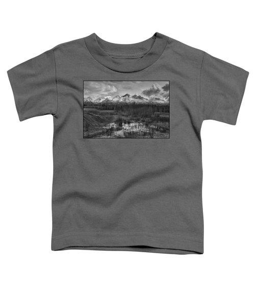 Chugach Mtn Range Toddler T-Shirt