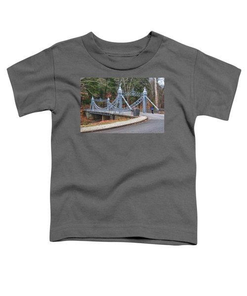 Cinderella Bridge Toddler T-Shirt
