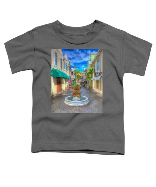 Classic Hdr Fountain Toddler T-Shirt