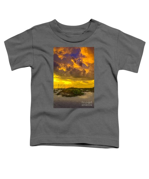 Clearing Skies Toddler T-Shirt