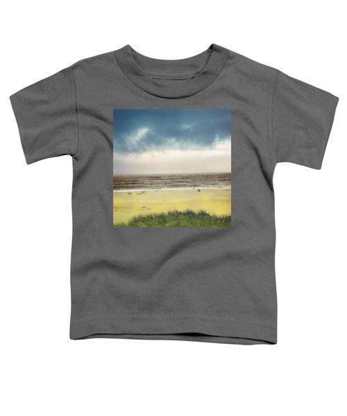 Clearing Storm Montauk  Toddler T-Shirt