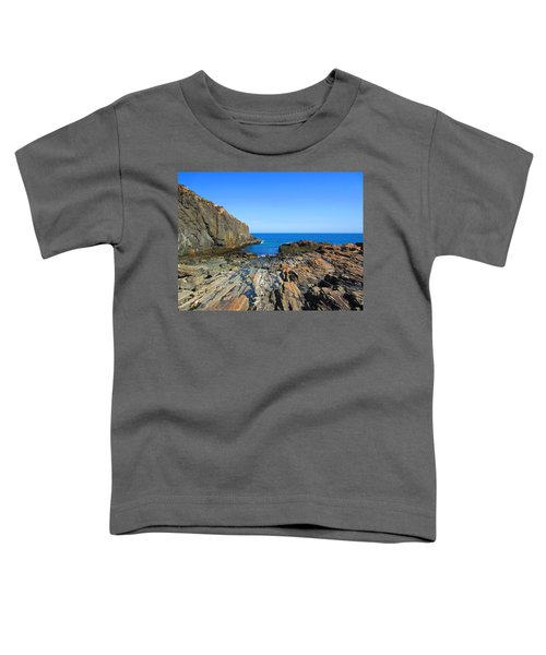 Cliff House Maine Coast Toddler T-Shirt