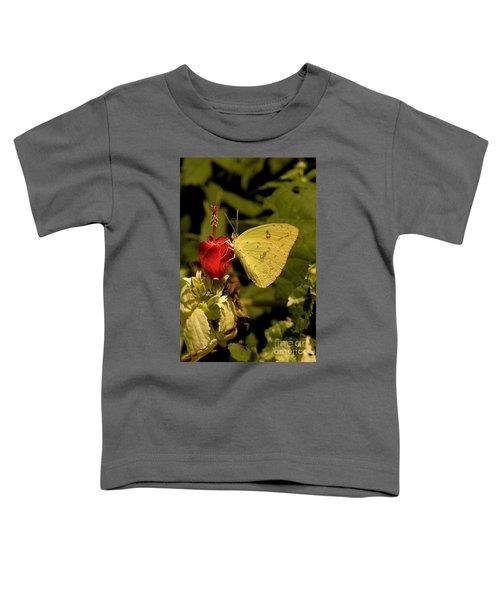Cloudless Sulfur Butterfly Toddler T-Shirt