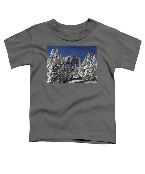 Cody Peak After A Snow Toddler T-Shirt