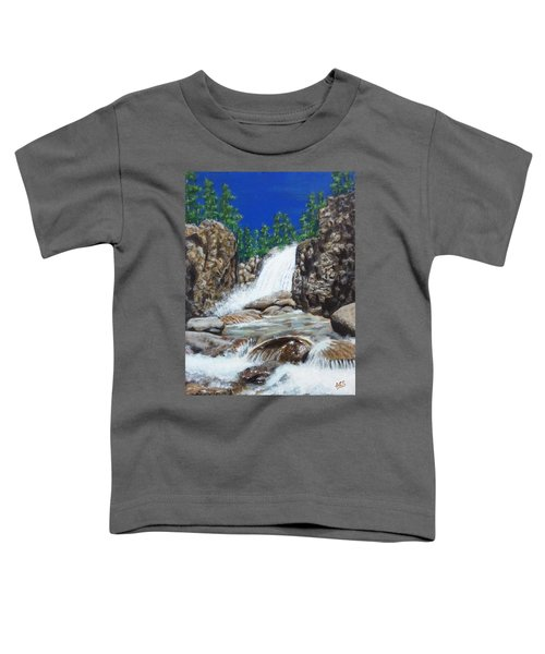 Colorado Toddler T-Shirt