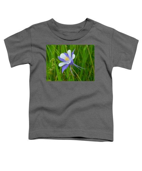 Colorado Columbine Toddler T-Shirt