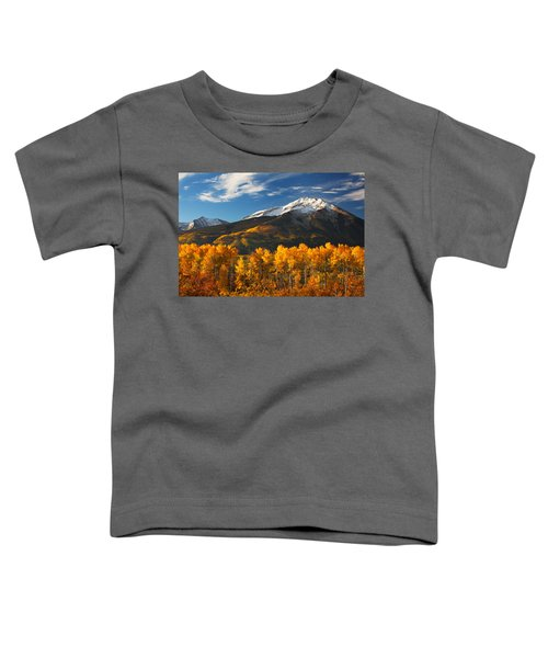 Colorado Gold Toddler T-Shirt