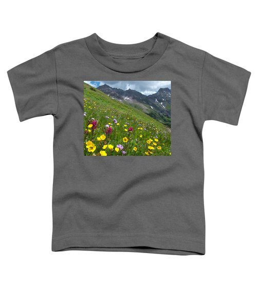 Colorado Wildflowers And Mountains Toddler T-Shirt