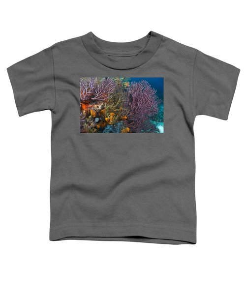 Colors Of Reefs Toddler T-Shirt
