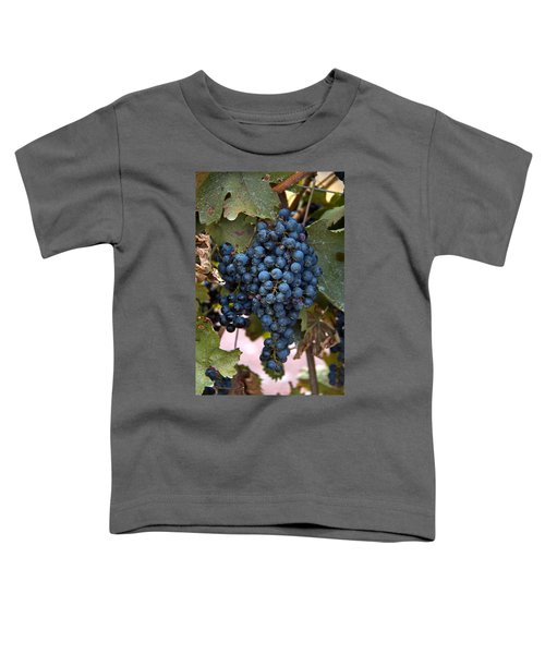 Concord Grapes Toddler T-Shirt