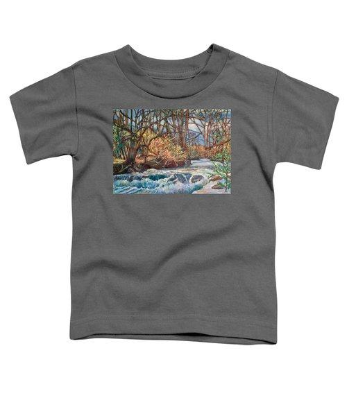 Connellys Run Toddler T-Shirt