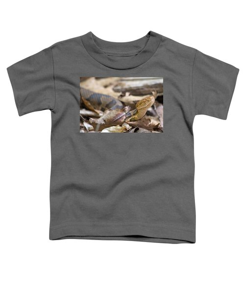 Copperhead In The Wild Toddler T-Shirt by Betsy Knapp