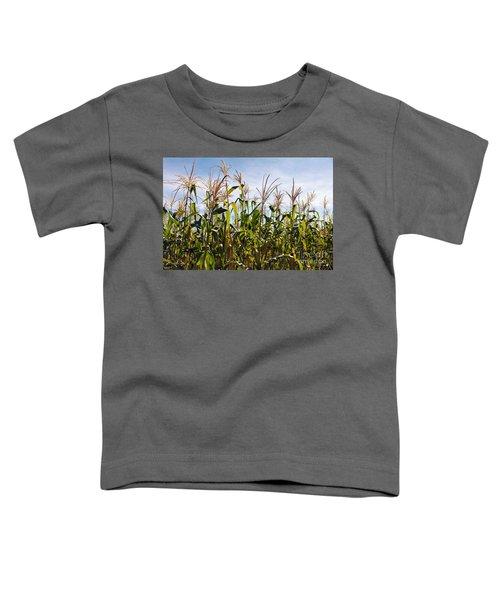 Corn Production Toddler T-Shirt