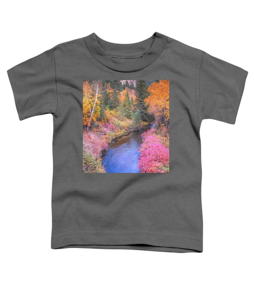 Cotton Candy Creek Toddler T-Shirt