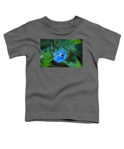 Country Blue Toddler T-Shirt