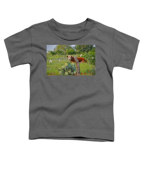 Country Friends Toddler T-Shirt