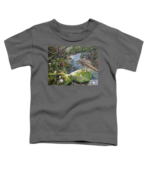 Creek -  Beyond The Rock - Mountaintown Creek  Toddler T-Shirt