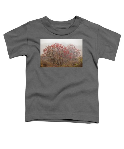 Crimson Fog Toddler T-Shirt