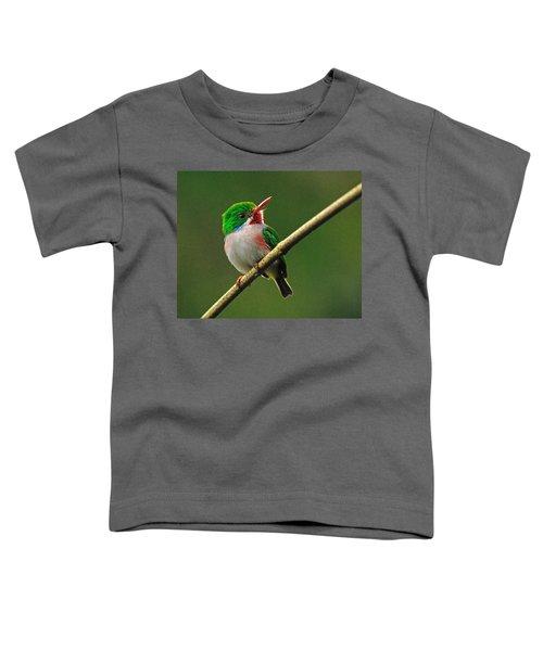 Cuban Tody Toddler T-Shirt by Tony Beck